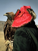 Eagle hunter portrait with pink hat.<br /> <br /> Eagle Hunting festival in Western Mongolia, in the province of Bayan Olgii. Mongolian and Kazak eagle hunters come to compete for 2 days at this yearly gathering. Mongolia