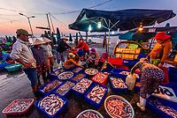 Fish market at sunrise, Cam Ha; Hoi An, Vietnam.