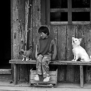 A Bhutanese girl at the entrance of her house with domestic animals, Gangtey, Bhutan, Asia