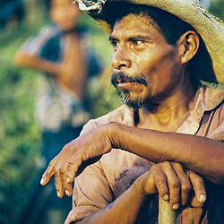 Indigenous life, Chorti, Lenca, Pech, Tolupán