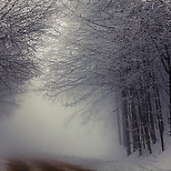 Mountain pass at misty winter time