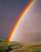 Brilliant rainbow above a tributary to Stony Creek, Denali National Park, Alaska.