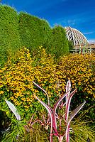 Dale Chihuly Exhibition (blown glass), O'Fallon Perennial Walk, Denver Botanic Gardens, Denver, Colorado USA.
