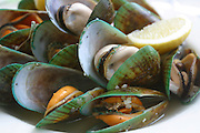 Green Lip Mussels, New Zealand<br />