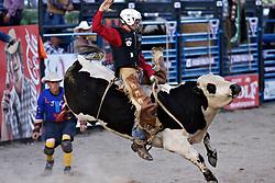 Bull ride, Jackson Hole Rodeo