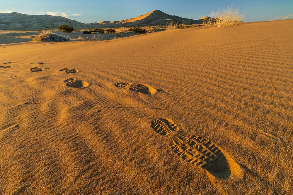 Boot prints, Kelso Dunes, late afternoon light, April, Mojave National Preserve, San Bernardino County, California, USA
