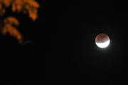 On December 10th 2011 a partial Lunar eclipse was visible. Photographed in Haifa, Israel