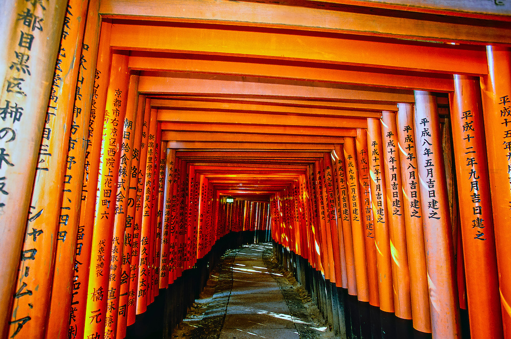 Thousands of torii gates lead up a mountain to the inner shrine, Fushimiinari-Taisha Shrine, Kyoto, Japan