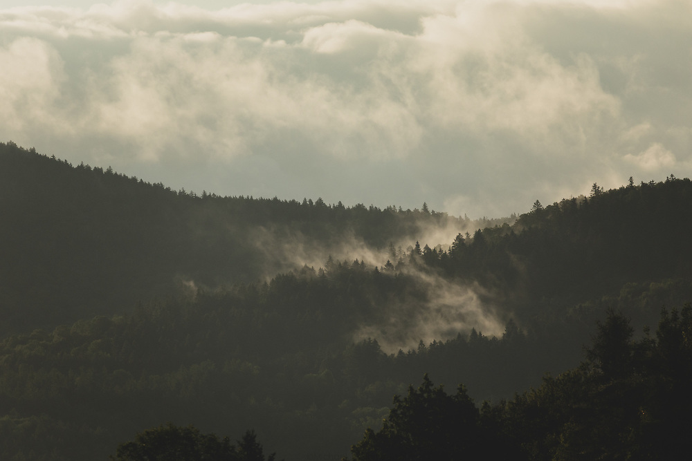 Layers of fog rolling through the hills of Vermont on a warm summer morning.