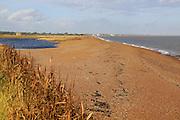 North Sea coastline between Bawdsey and Shingle Street, East Lane, Bawdsey, Suffolk, England, UK