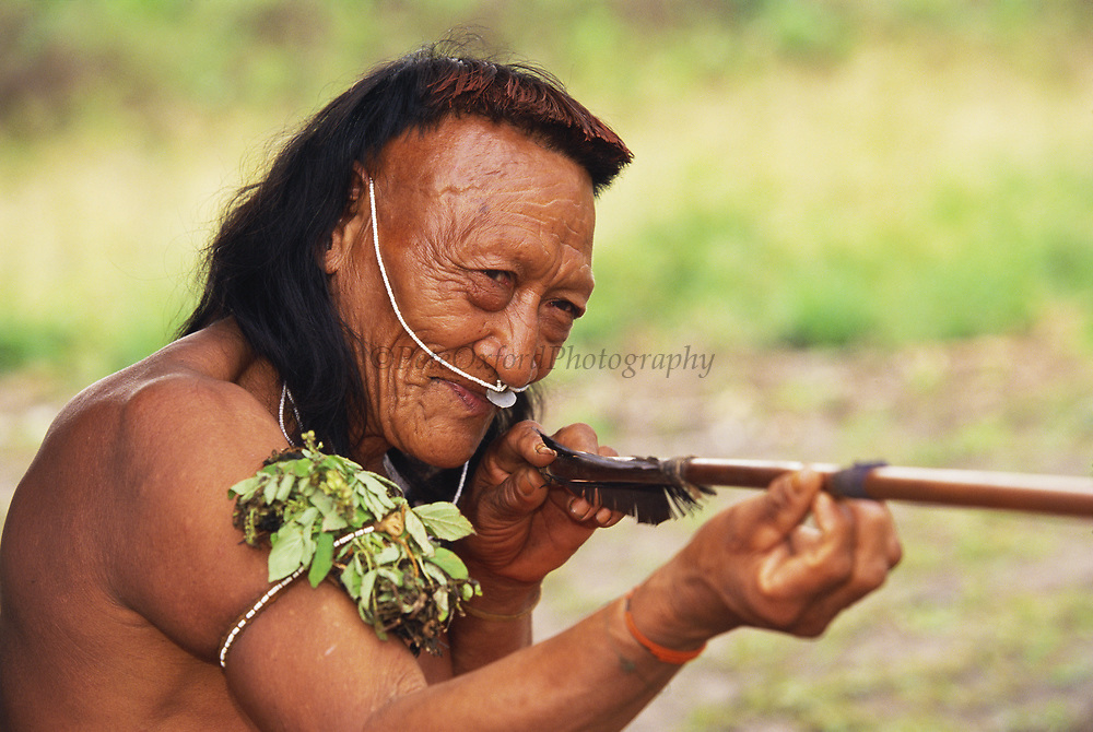 Yaminahua Indian with Arrow<br />Boca Mishagua River<br />Amazon Rain Forest, PERU.  South America<br />'Only contacted in 1988'
