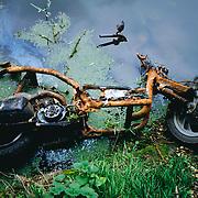 Damaged motor bike lying in water