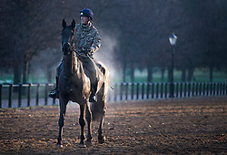 © Licensed to London News Pictures. 22/01/2021. London, UK. Steam rises from a horse as it is exercised by member of the Household Cavalry in Hyde Park, central London on a cold and frosty winter morning. Parts of the UK are currently experiencing heavy flooding caused by heavy rainfall during storm Christoph.  Photo credit: Ben Cawthra/LNP