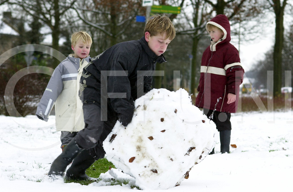 fotografie frank uijlenbroek©2001 michiel van de velde.011227 dalfsen ned.Winter in Salland brengt de kinderen weer op straat..Steunend en kreundend rolt Rick de grote sneeuwal tot een sneeuwpop terwijl Geert(l) en JAn toekijken
