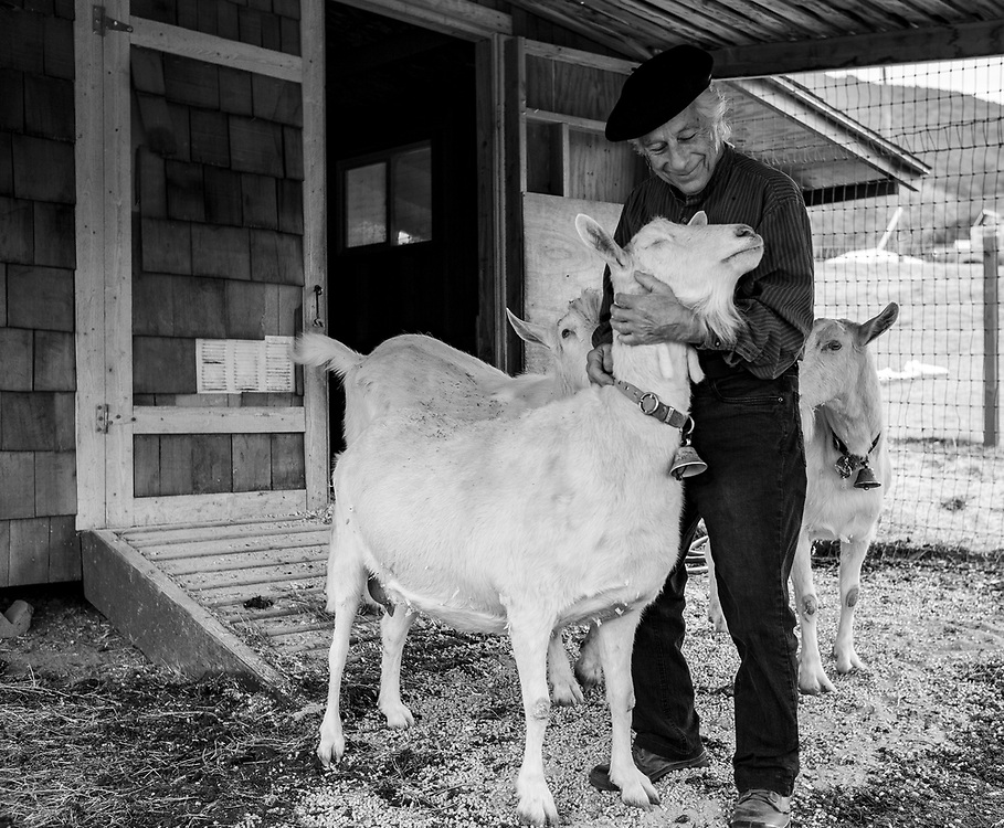 Farmer Charlie Cascio tends to the goats at Carmel Valley Ranch in Carmel Valley, Calif. on Dec. 20, 2018.