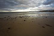 Beach & Kelp - Tasmania