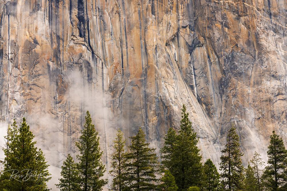 El Capitan detail, Yosemite National Park, California