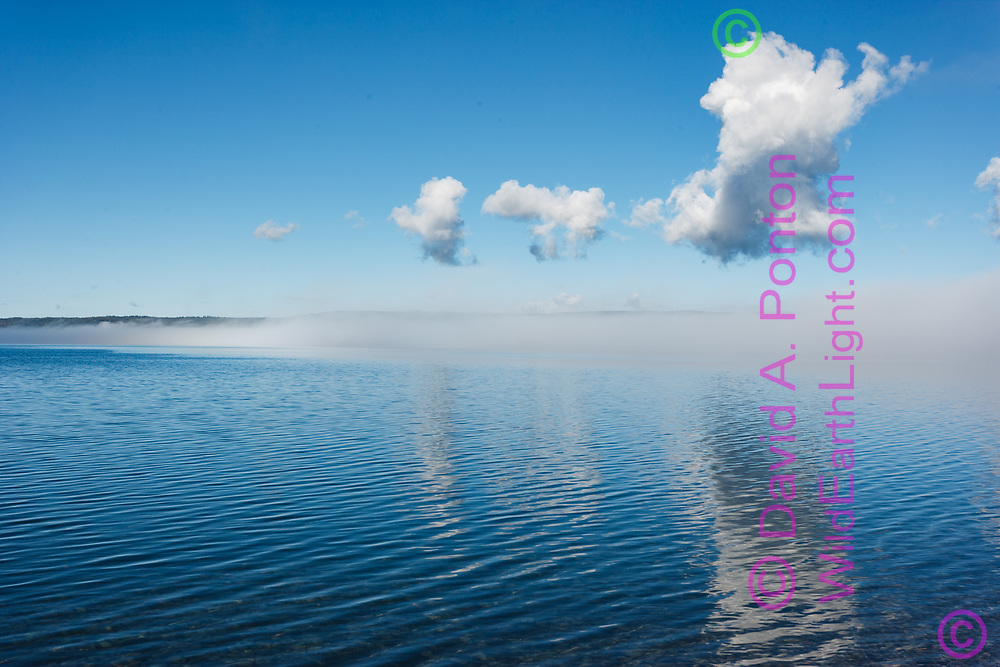 Fog clearing from surface of tranquil lake to reveal blue sky reflected in smooth water surface, Yellowstone Lake, WY, © David A. Ponton