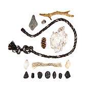 Fishing ropes, schist beach stone, Dog Whelks (Nucella lapillus), sea coal, driftwood, Common Periwinkle (Littorina littorea), cone (possibly Hemlock), birch bark (Betula papyrifera)