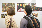 AN EDIBLE TIME LAPSE EXHIBIT<br /> curated by Alice Formiga, Jim Myers and Lane Selman, assisted by Katie Gourley