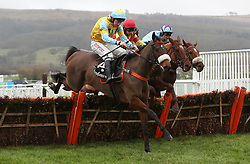 Buster Valentine ridden by Leighton Aspell in the Ballymore Novices' Hurdle during Festival Trials Day at Cheltenham Racecourse.