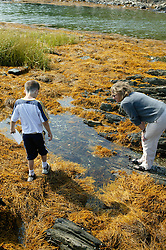 Alfie & Artist Looking for Shapes on Water to Draw
