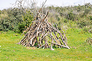 Firewood collected for a bonfire