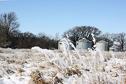 23 February 2008: Grain bins stand at the edge of a snow covered pasture with tall grass lit by the mid-morning sun.