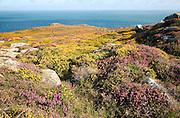 View to sea from Carn Llidi tor, St David's Head, Pembrokeshire, Wales