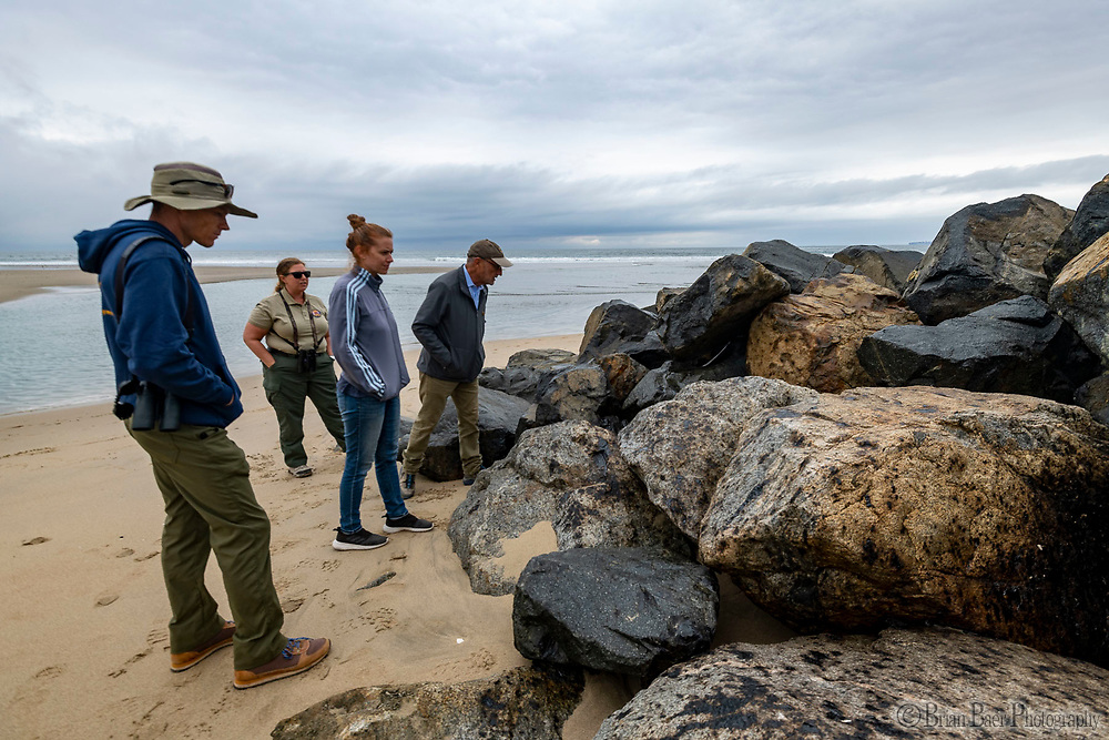 Huntington SB 10-07-2021_1271<br /> The director looks at oil covered rocks at entrance to Talbert Marsh.<br /> <br /> Huntington State Beach<br /> © 2021, California State Parks.<br /> Photo by Brian Baer