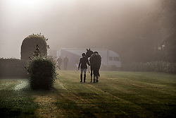 Horse in the mist FEI World Dressage Championships for Young Horses<br /> Internationales Dressur- und Springfestival - Verden 2014<br /> © Dirk Caremans