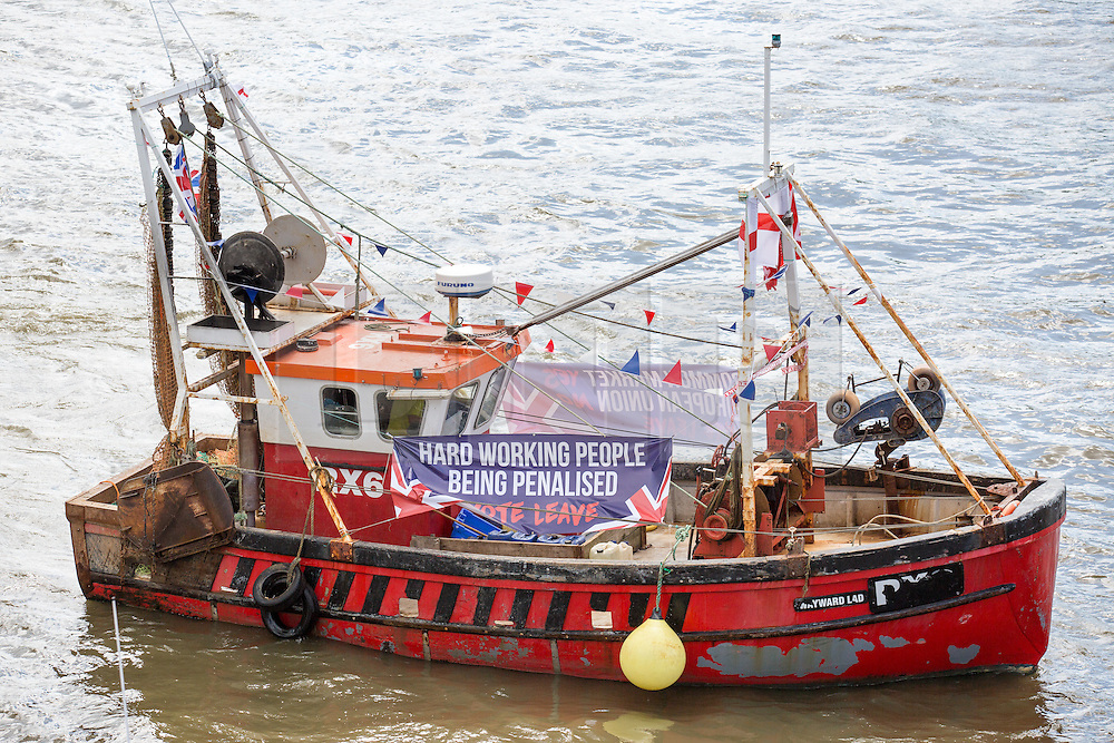 © Licensed to London News Pictures. 15/06/2016. London, UK. The pro-Brexit campaign 'Fishermen for Leave', sail a flotilla of over 30 vessels up the Thames. The flotilla, including UKIP leader Nigel Farage, caused traffic issues in central London, as vessels travelled up the Thames for high tide and to coincide with the last Prime Minister's Questions before the EU referendum takes place on 23 June. Photo credit : Tom Nicholson/LNP