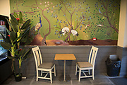 Mural depicting various birds on the wall of a small restaurant in London, England, United Kingdom.
