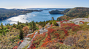 Hike Acadia Mountain Trail for good views of Somes Sound and typically peak fall colors in the second week of October, in Acadia National Park, Bar Harbor, Mount Desert Island, Maine, USA. Hike granite peaks and enjoy Atlantic coastal scenery. Originally created as Lafayette National Park in 1919, the oldest National Park east of the Mississippi River, it was renamed Acadia in 1929. During the last glacial maximum 21,000 years ago, glaciers measuring up to 9,000 feet thick cut into granite ridges, sculpting the fjord-like Somes Sound. The panorama was stitched from 2 overlapping photos.