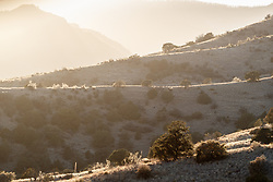 Backlit ridges on hillside, Ladder Ranch, west of Truth or Consequences, New Mexico, USA.