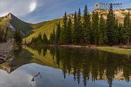 Wind Mountain reflects in beaver pond along the Rocky Mountain Front near Choteau, Montana, USA