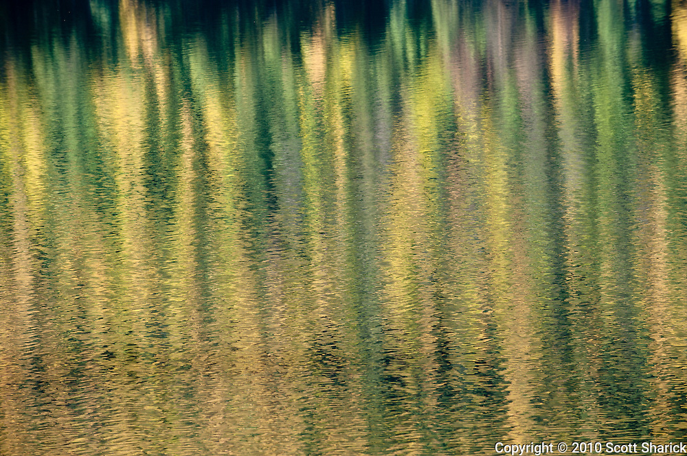 Reflection of fall colors in a small Montana Lake. Missoula Photographer, Missoula Photographers, Montana Pictures, Montana Photos, Photos of Montana