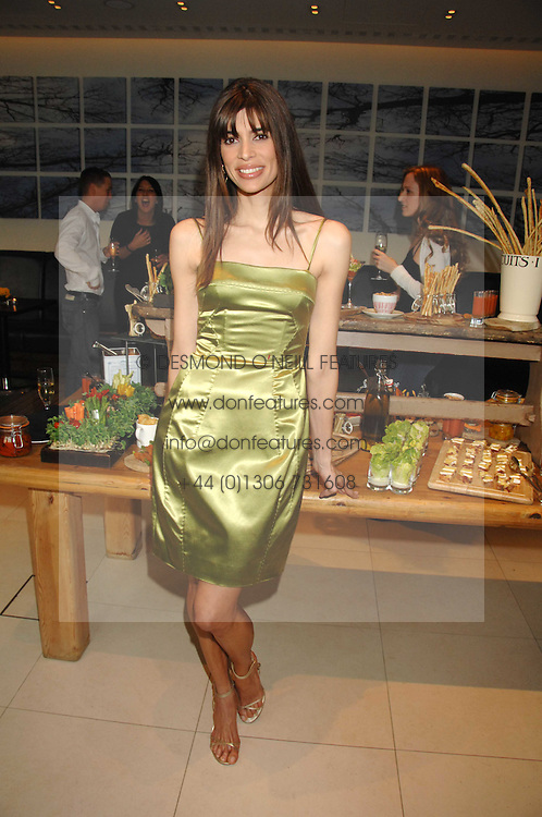 LISA B at a party to celebrate the publication of her book 'Lifestyle Essentials' held at the Cook Book Cafe, Intercontinental Hotel, Park Lane London on 10th April 2008.<br /><br />NON EXCLUSIVE - WORLD RIGHTS