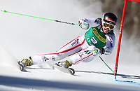 ALPINE SKIING - WORLD CUP 2011/2012 - ASPEN (USA) - 26/11/2011 - PHOTO : ALESSANDRO TROVATI<br />  / PENTAPHOTO / DPPI - WOMEN GIANT SLALOM - Elisabeth Goergl (Aut) /2nd