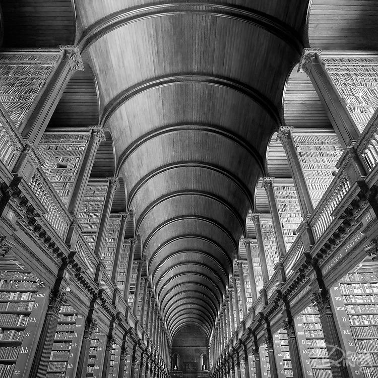 The gloominess of the interior of the Library at Trinity College Dublin fascinated me. I spent some time soaking up the atmosphere before deciding on an almost abstract shot. To me this represented the relentless passing of time turning current ideas into ancient history.<br />