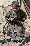 India, Ladakh,