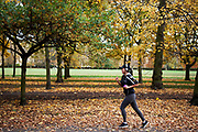 Woman running in Autumn in Regents Park, London. Trees during the fall season discolour, turning yellow and brown before dropping. With low light this makes for a beautiful time of year.