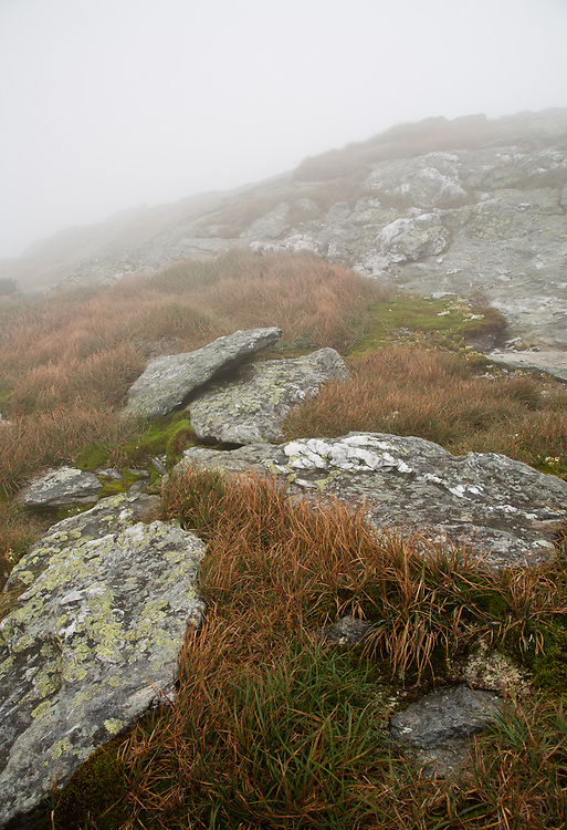 view of the alpine zone on Camel's Hump in the Green Mountains of Vermont on a foggy day