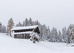 THEMENBILD - Neuschnee entlang der B311 Gailtalbundesstrasse, aufgenommen am Dienstag, 12. November 2019, in Kartitsch in Osttirol. Heute schneit es in Österreich verbreitet bis in tiefe Lagen. Ein Teil des Schneefalls konzentriert sich dabei auf Osttirol. Hier kommen laut ZAMG bis Mittwochabend selbst in Tallagen 20 bis 50 Zentimeter Neuschnee zusammen. Vereinzelt sind auch bis zu 75 Zentimeter möglich, wie im Tiroler Gailtal // Fresh snow along the B311 Gailtalbundesstrasse, taken on Tuesday, November 12, 2019, in Kartitsch in Osttirol. Today it is snowing in Austria to low altitudes. Part of the snowfall is concentrated on East Tyrol. According to ZAMG, 20 to 50 centimeters of fresh snow come together here even in valleys on Wednesday evening. Occasionally, up to 75 centimeters are possible, as in the Tyrolean Gail Valley. EXPA Pictures © 2019, PhotoCredit: EXPA/ Johann Groder#