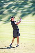 Pfeiffer Men's Golf