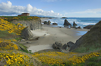 Home situate on a bluff above Bandon Beach Oregon