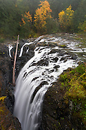 Fall Color and Englishman River Falls in Englishman River Falls Provincial Park near Nanaimo, British Columbia, Canada