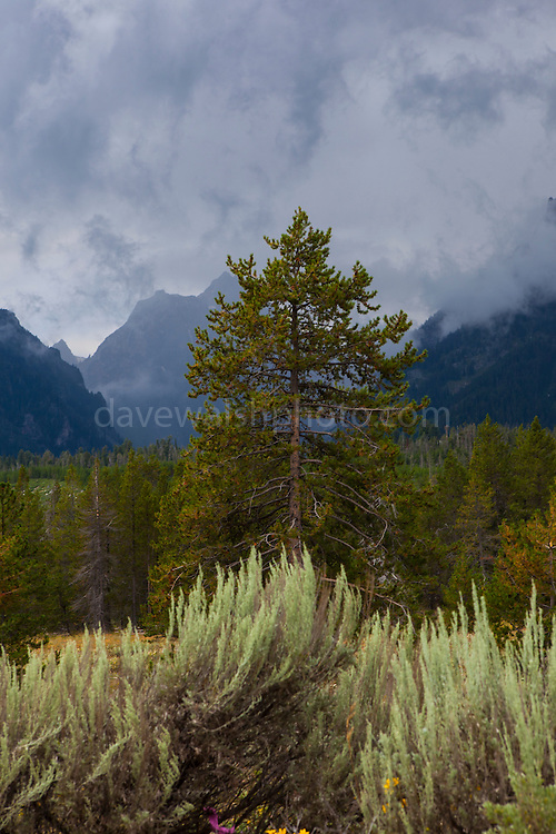 Brooding thunderclouds over Grand Teton National Park, Wyoming.