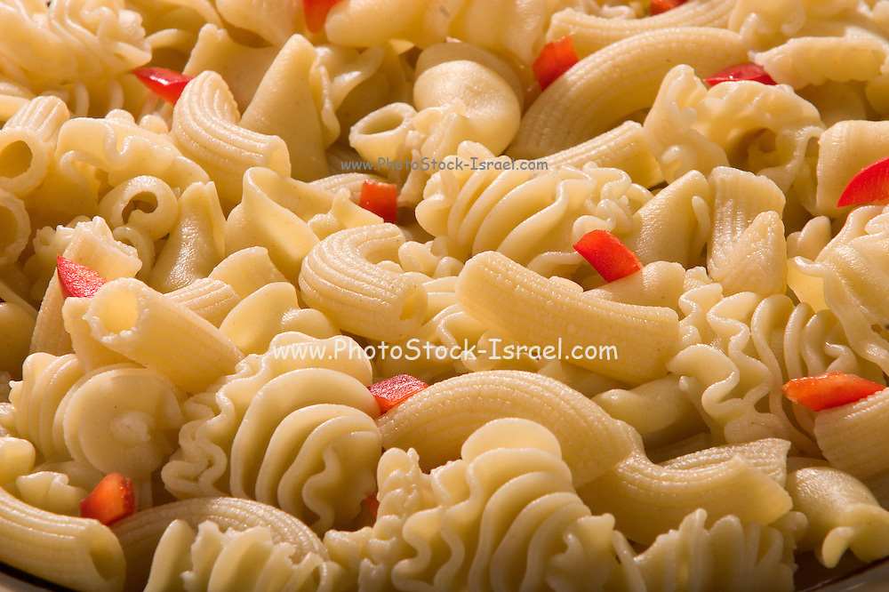 Plate of assorted pasta