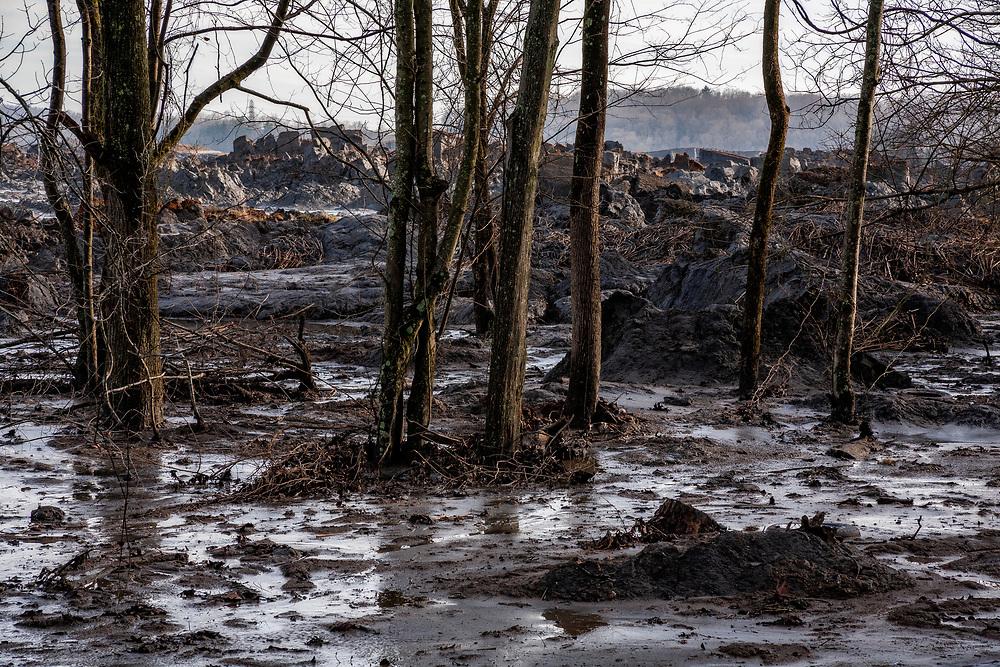 Coal fly ash sludge disaster on Watts Bar Lake, Swan Pond, Kingston, Tennessee